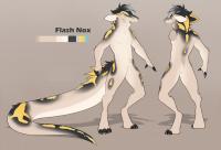 Flash Nox
