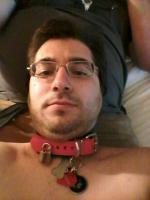 My Pink Collar