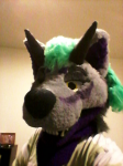 Me wearing a friend's fursuit head.
